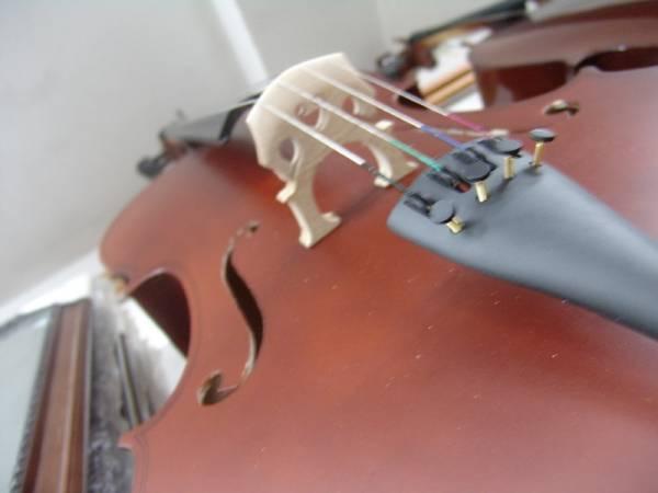Violinë